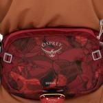 Поясная сумка Osprey Seral 4